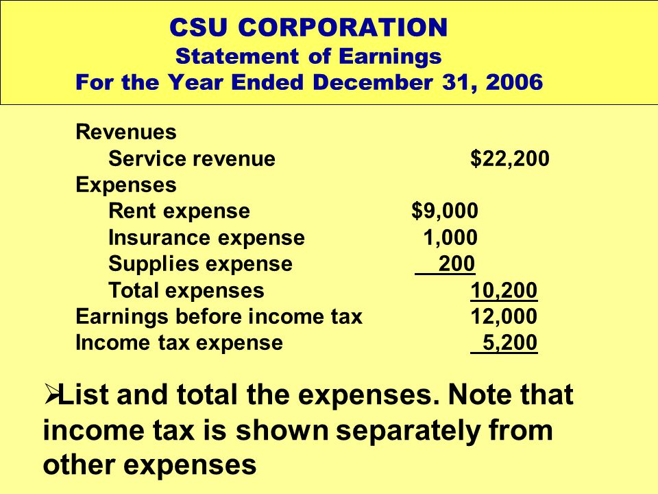 CSU CORPORATION Statement of Earnings For the Year Ended December 31, 2006