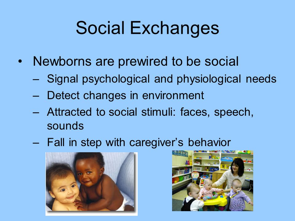 Social Exchanges Newborns are prewired to be social