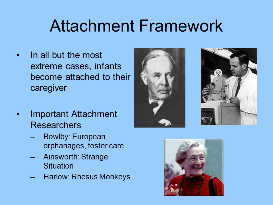 Attachment Framework In all but the most extreme cases, infants become attached to their caregiver.