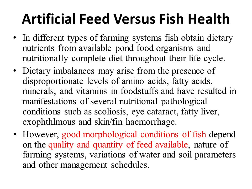 Artificial Feed in Fish Culture - ppt download