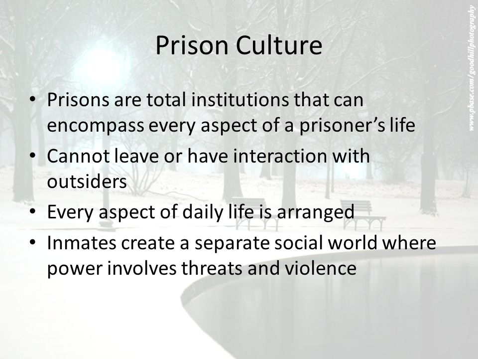 Introduction to Criminal Justice - ppt video online download