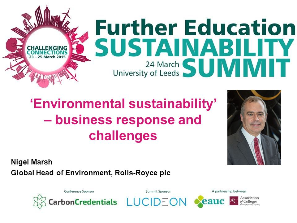 'Environmental sustainability' – business response and challenges