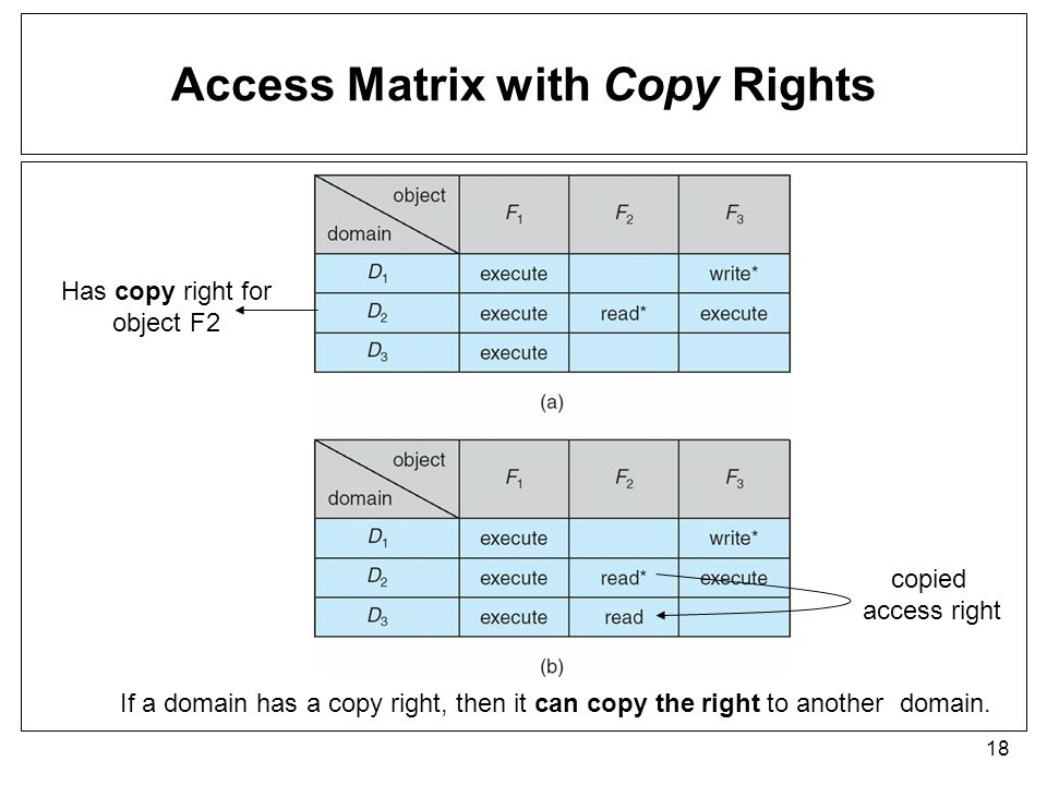 Access Matrix with Copy Rights