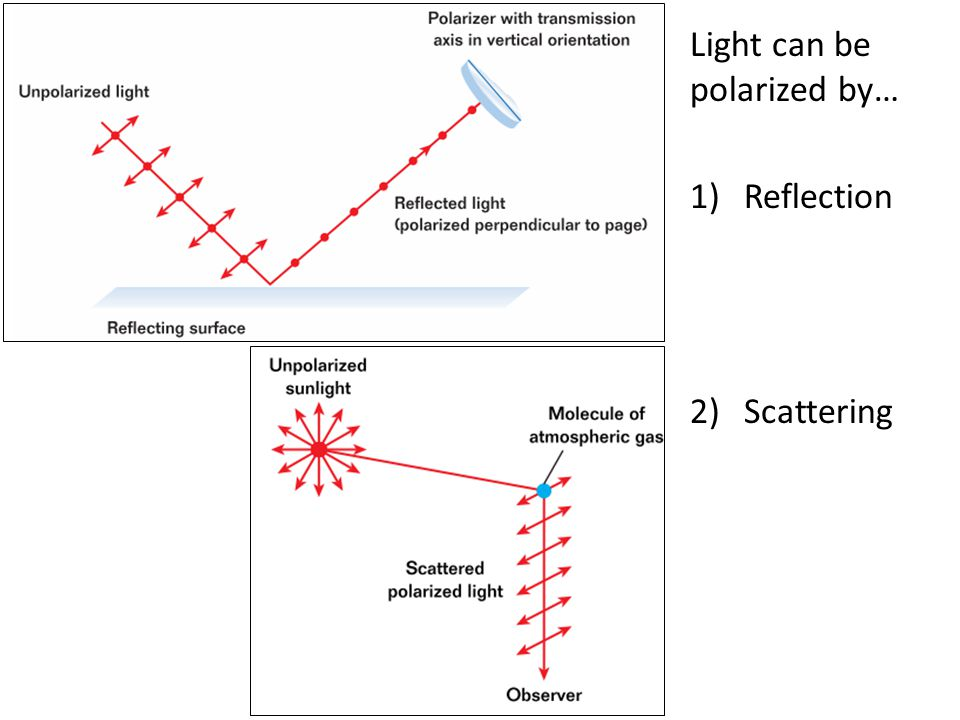 Light can be polarized by…