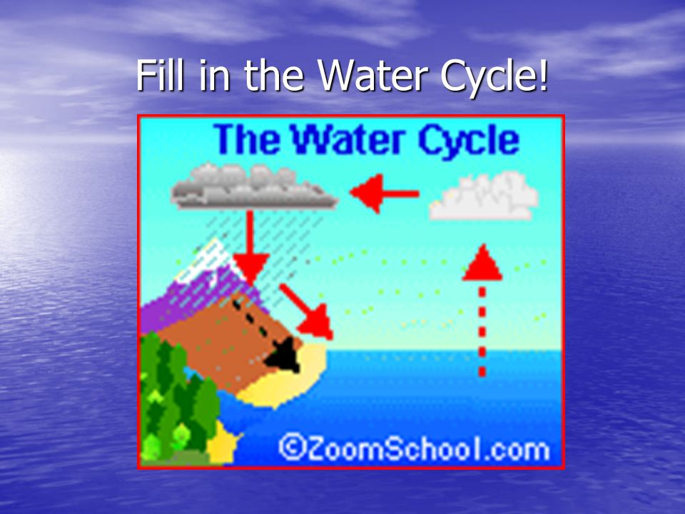 Fill in the Water Cycle!