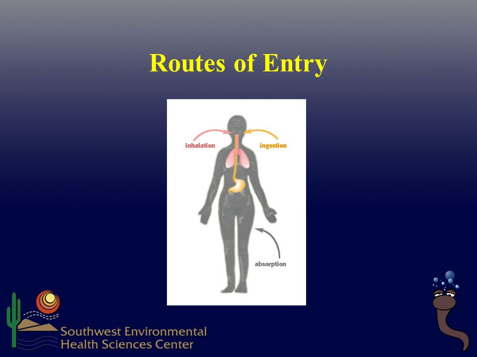 Routes of Entry