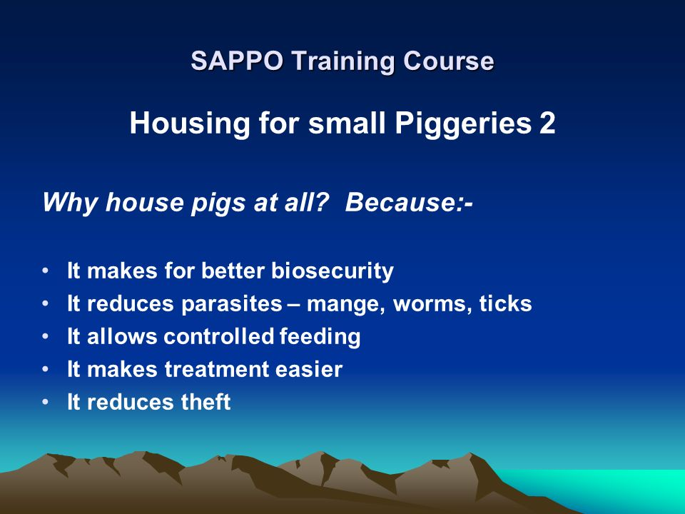 Housing for small Piggeries 2