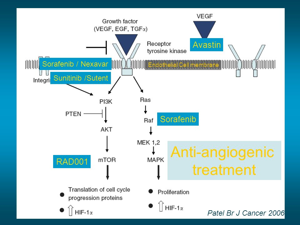 Anti-angiogenic treatment Avastin Sorafenib RAD001 Sorafenib / Nexavar