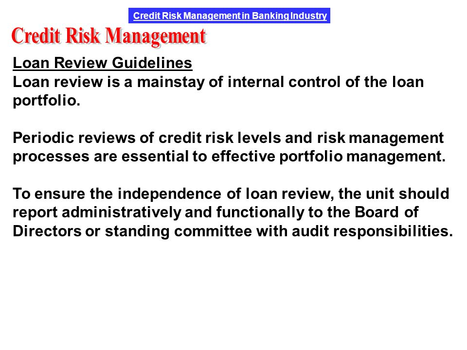 guidelines on credit risk management