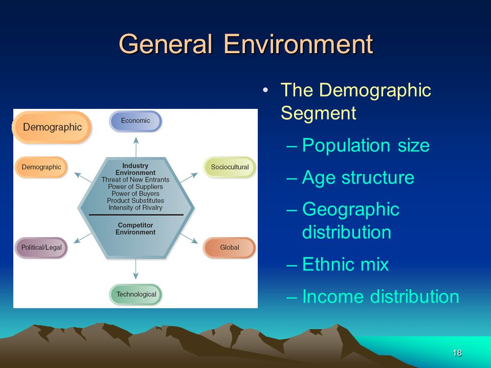 General Environment The Demographic Segment Population size