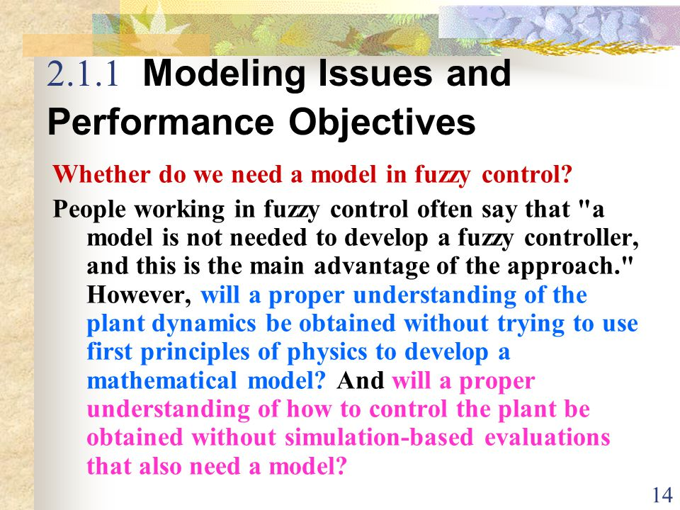 2.1.1 Modeling Issues and Performance Objectives