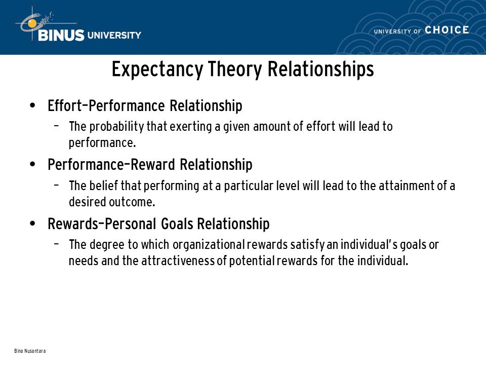 Expectancy Theory Relationships