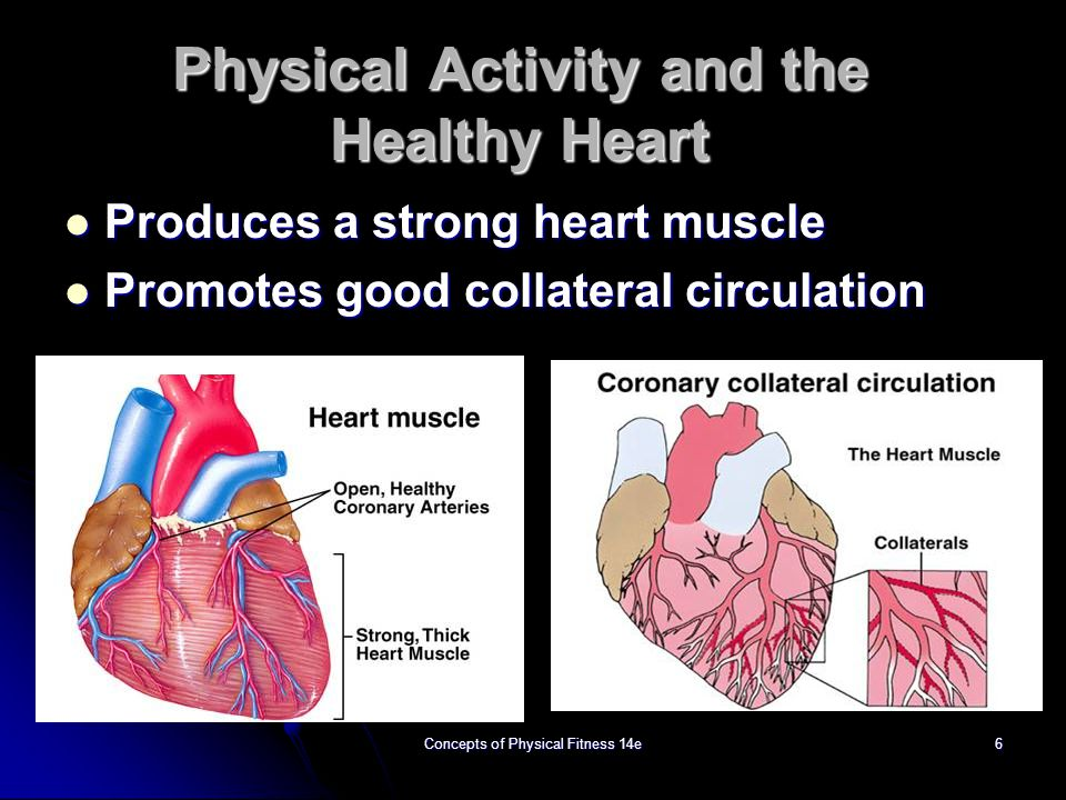 Physical Activity and the Healthy Heart