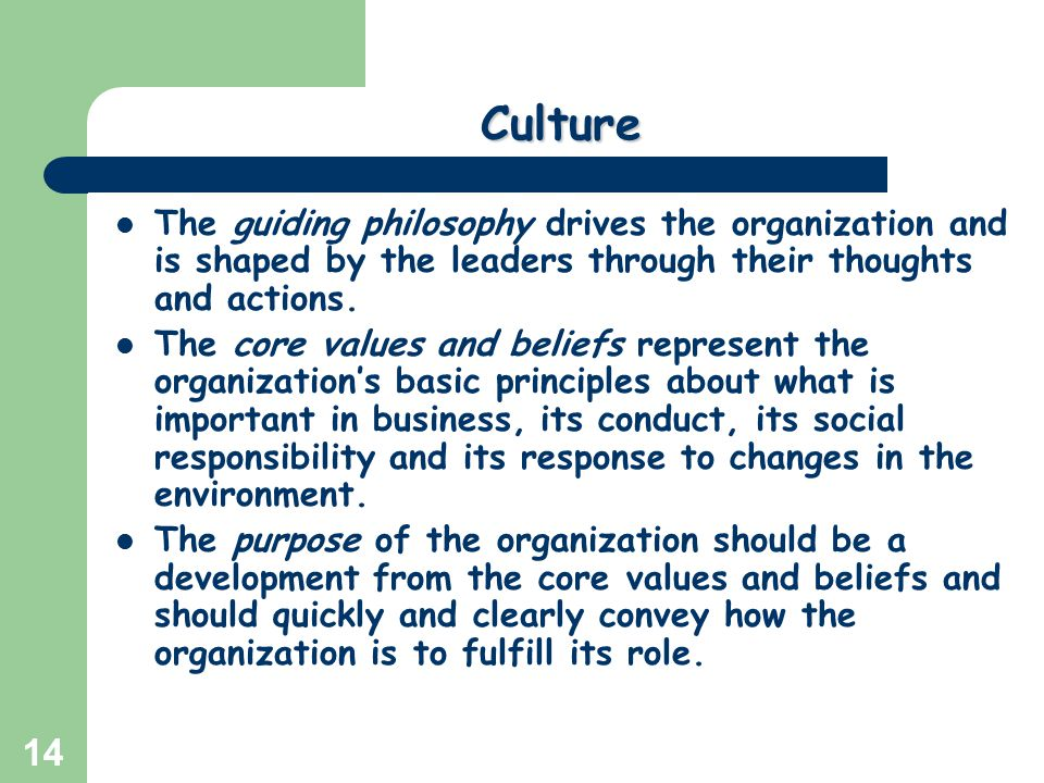 Culture The guiding philosophy drives the organization and is shaped by the leaders through their thoughts and actions.