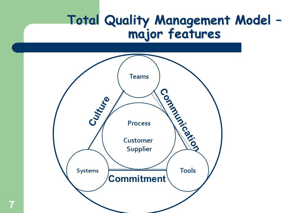 Total Quality Management Model – major features