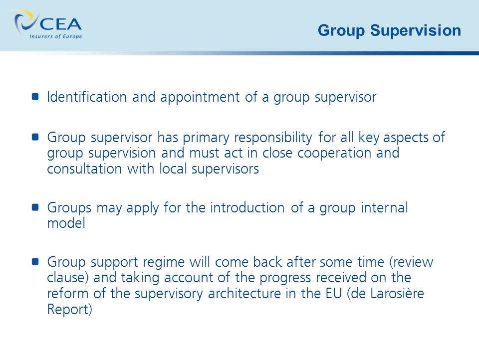 Group Supervision Identification and appointment of a group supervisor