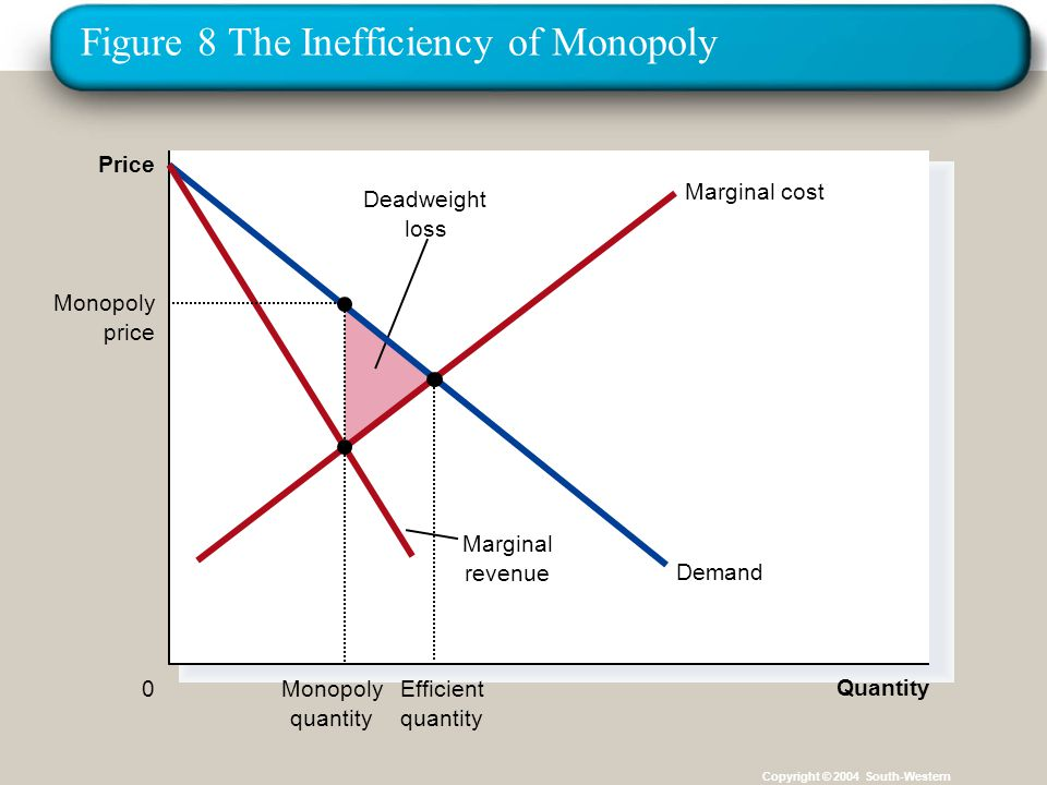 Figure 8 The Inefficiency of Monopoly