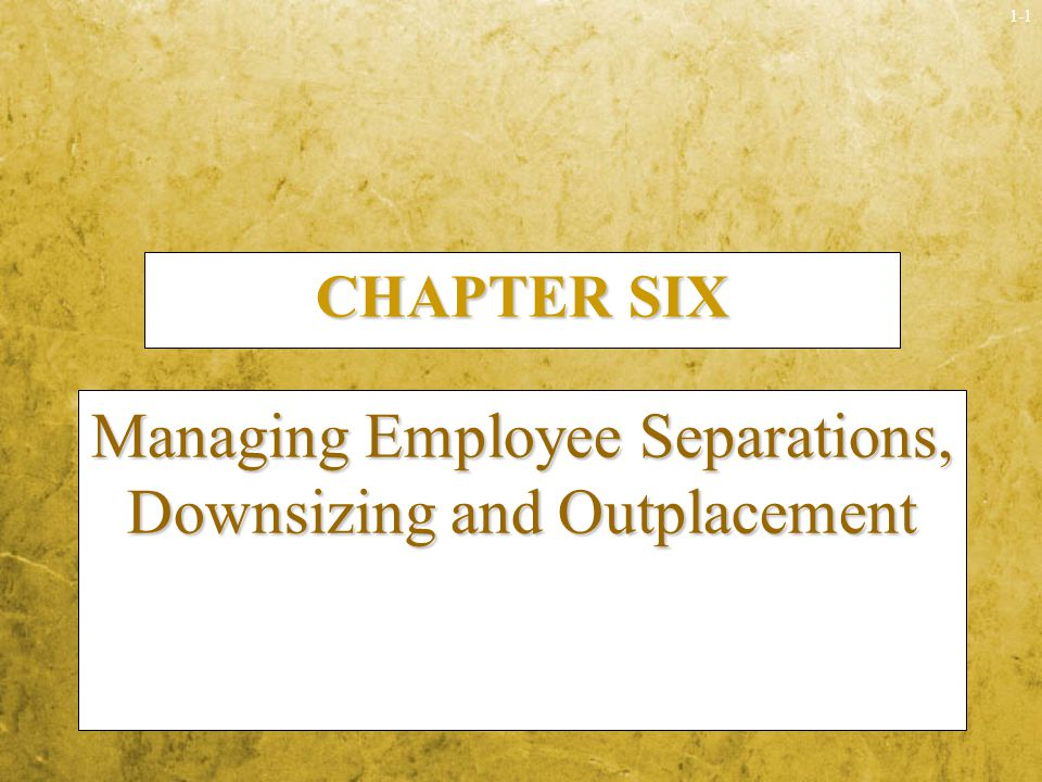 Managing Employee Separations, Downsizing and Outplacement