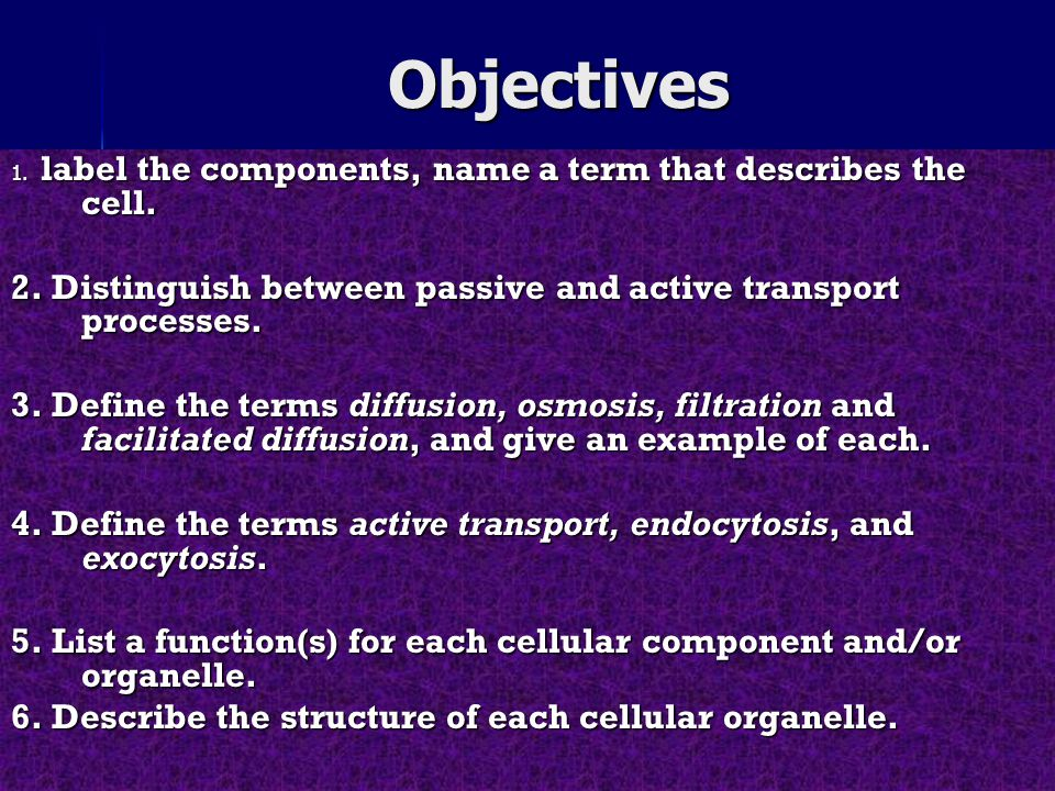 Anatomy & physiology of cells - ppt download