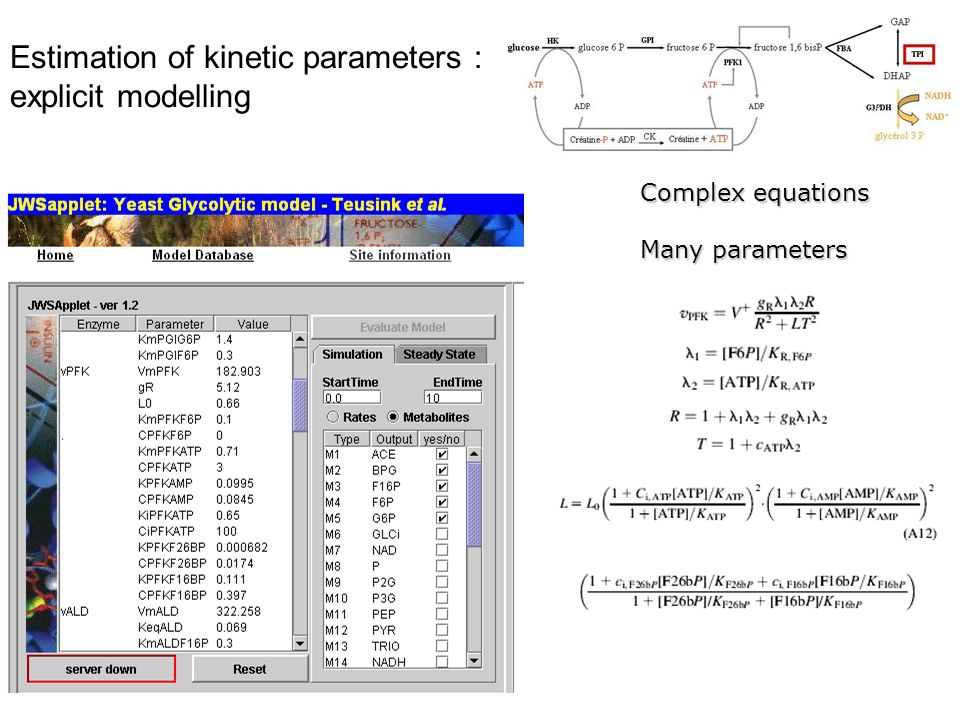 Estimation of kinetic parameters : explicit modelling