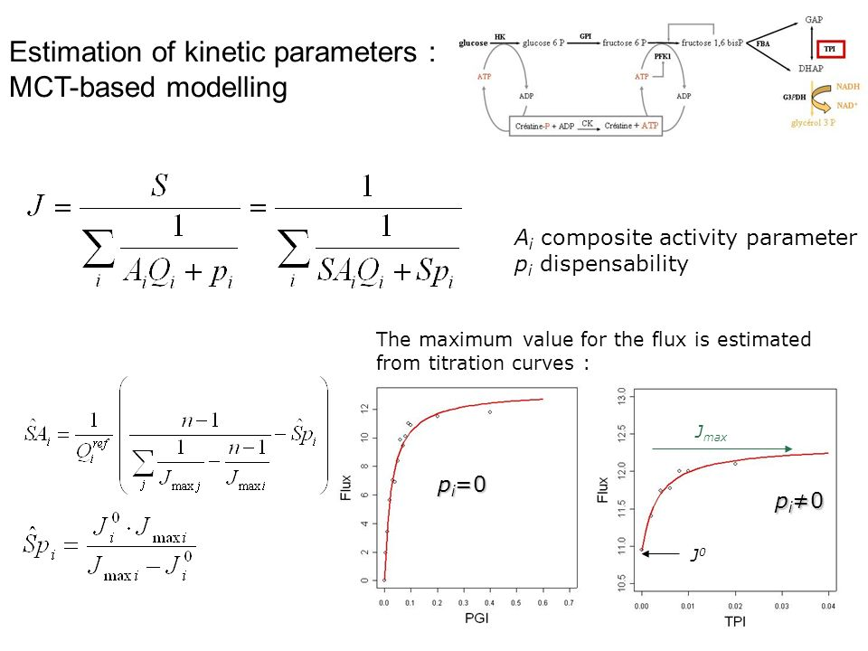 Estimation of kinetic parameters : MCT-based modelling