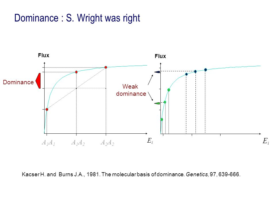 Dominance : S. Wright was right