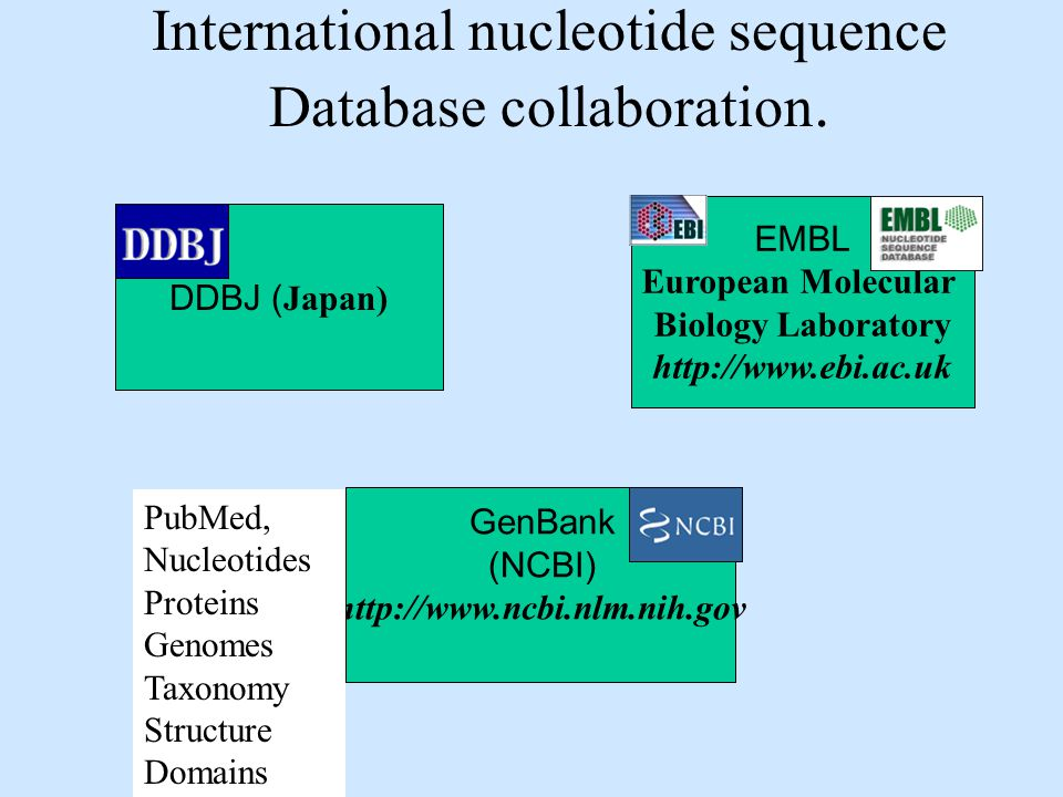 International nucleotide sequence Database collaboration.