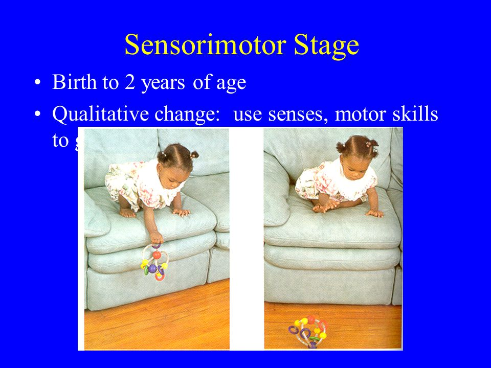 Sensorimotor Stage Birth to 2 years of age
