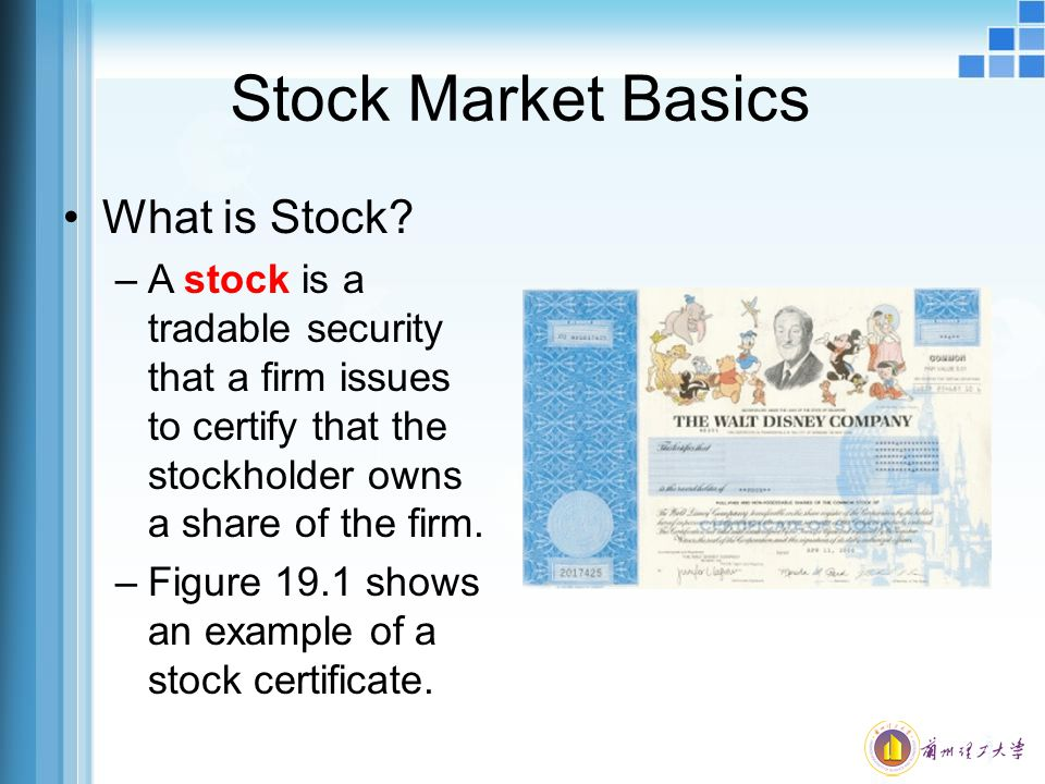 Stock Market Basics What is Stock