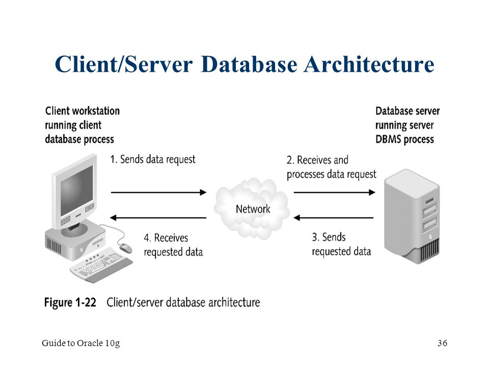 Client/Server Database Architecture