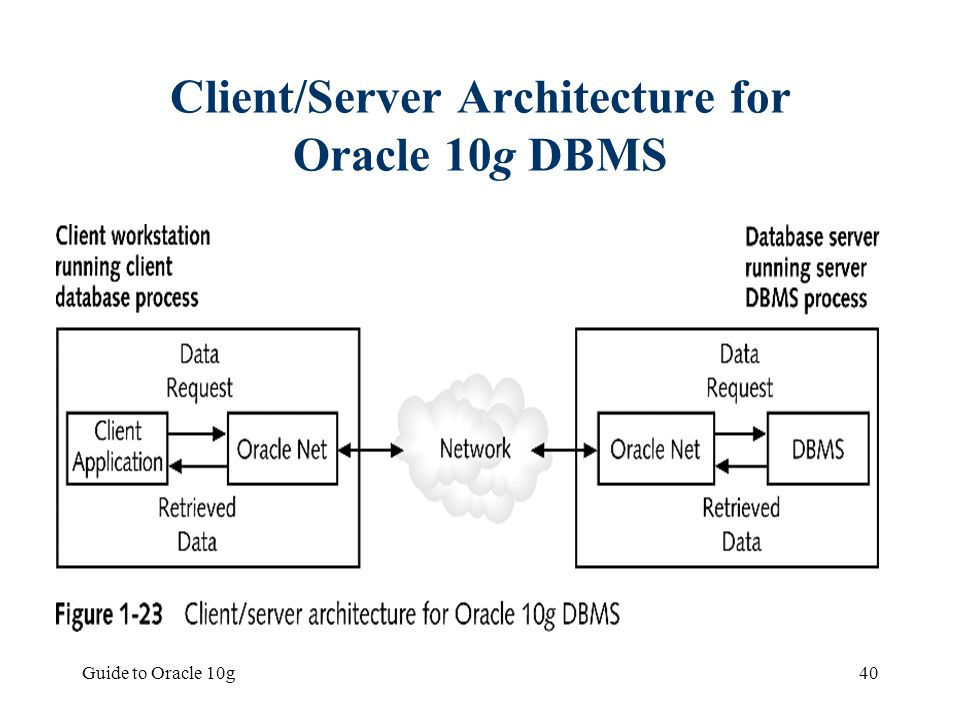 Client/Server Architecture for Oracle 10g DBMS