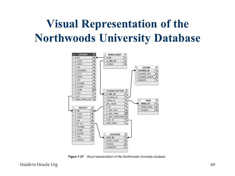 Visual Representation of the Northwoods University Database