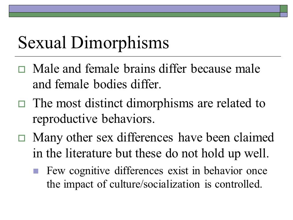 Sexual Dimorphisms Male and female brains differ because male and female bodies differ.