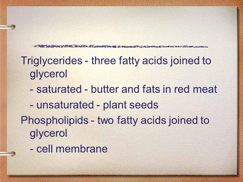 Triglycerides - three fatty acids joined to glycerol