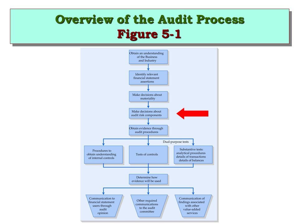 Overview of the Audit Process Figure 5-1