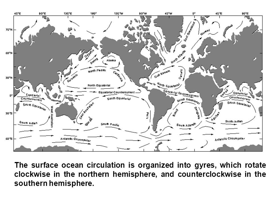 The surface ocean circulation is organized into gyres, which rotate clockwise in the northern hemisphere, and counterclockwise in the southern hemisphere.