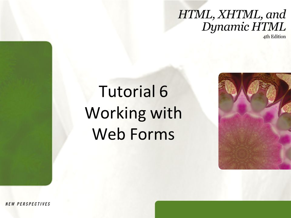 Tutorial 6 Working with Web Forms