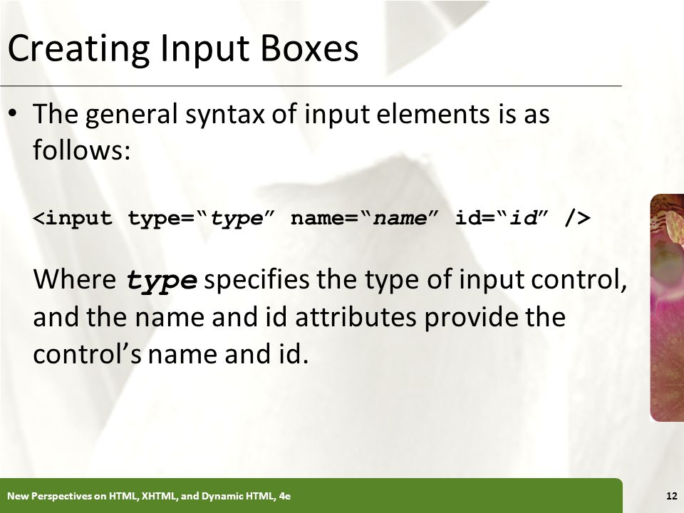 Creating Input Boxes The general syntax of input elements is as follows: <input type= type name= name id= id />