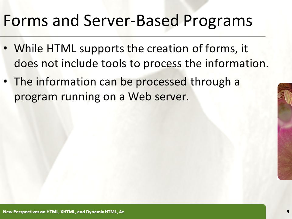 Forms and Server-Based Programs
