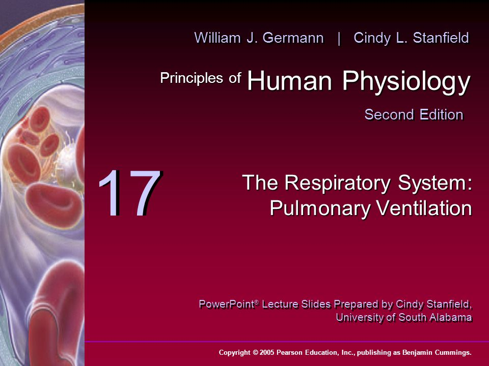 The Respiratory System: Pulmonary Ventilation - ppt download