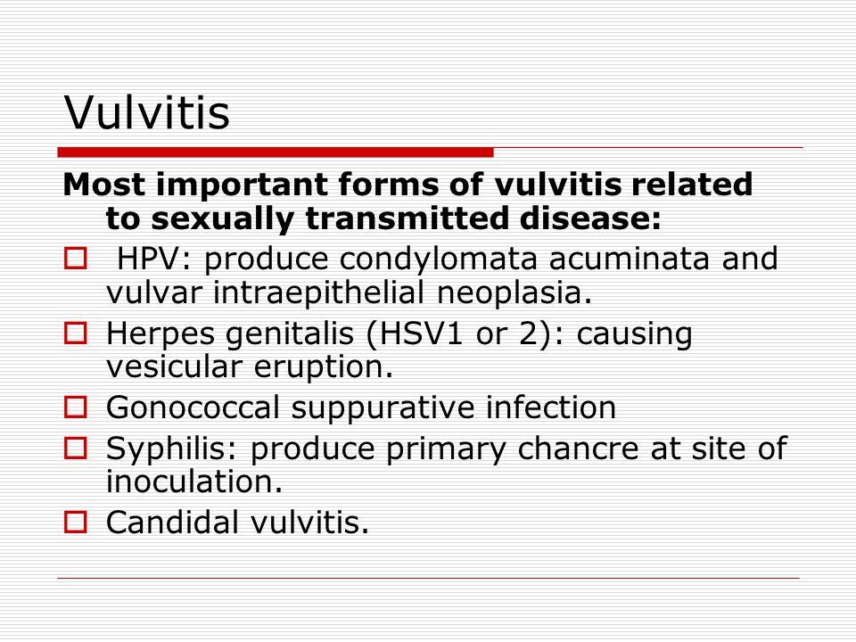 Condyloma a belek kezelésében - Fahéj a paraziták kezelésében