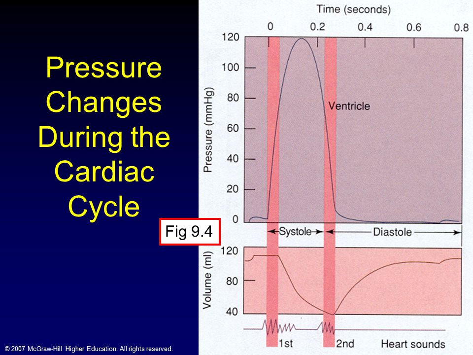 Pressure Changes During the Cardiac Cycle