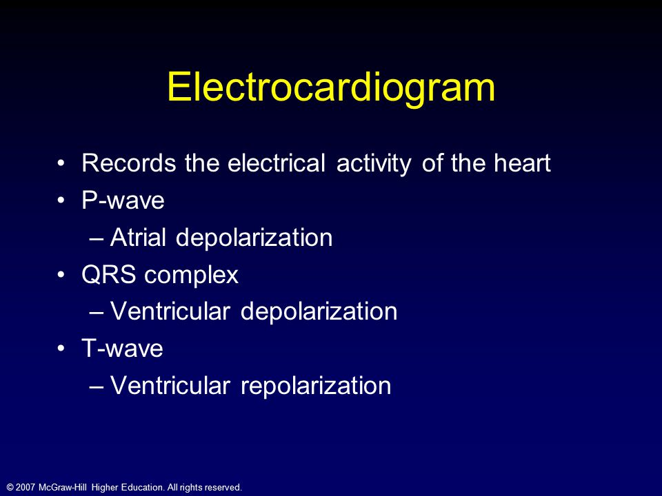 Electrocardiogram Records the electrical activity of the heart P-wave