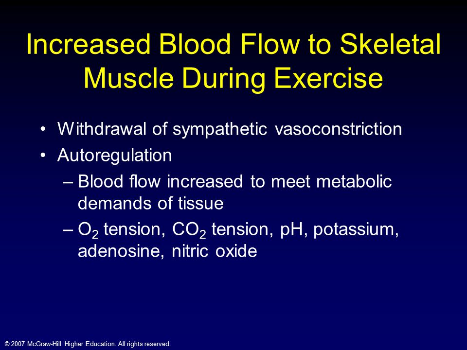 Increased Blood Flow to Skeletal Muscle During Exercise