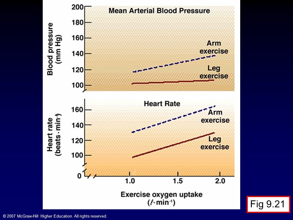 Heart Rate and Blood Pressure During Arm and Leg Exercise