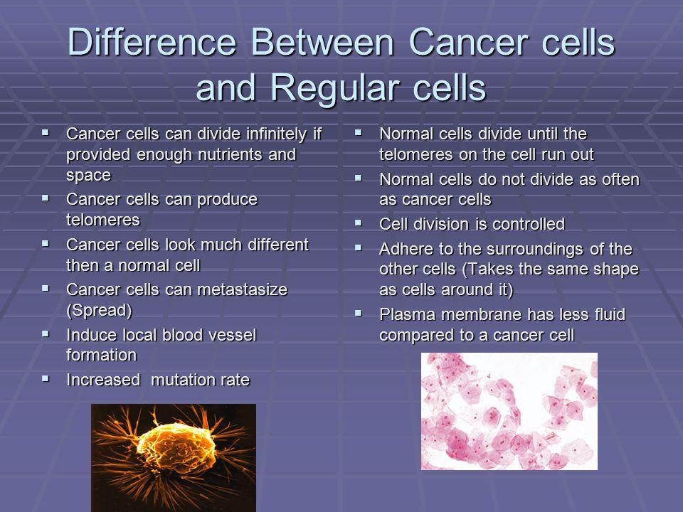 The Genetics of Cancer Presenters Patrick Day Rachael Hanks - ppt