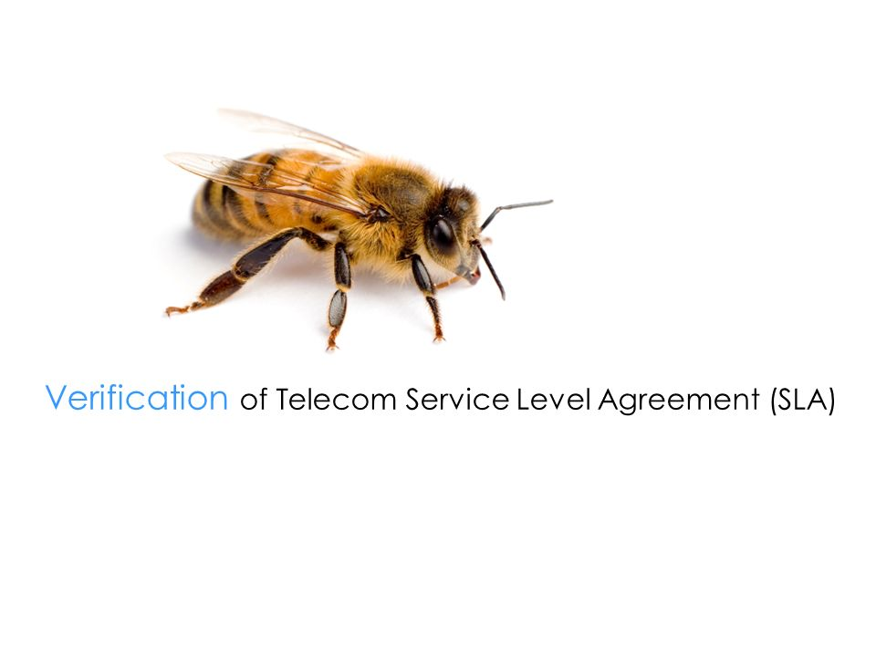 Verification of Telecom Service Level Agreement (SLA)