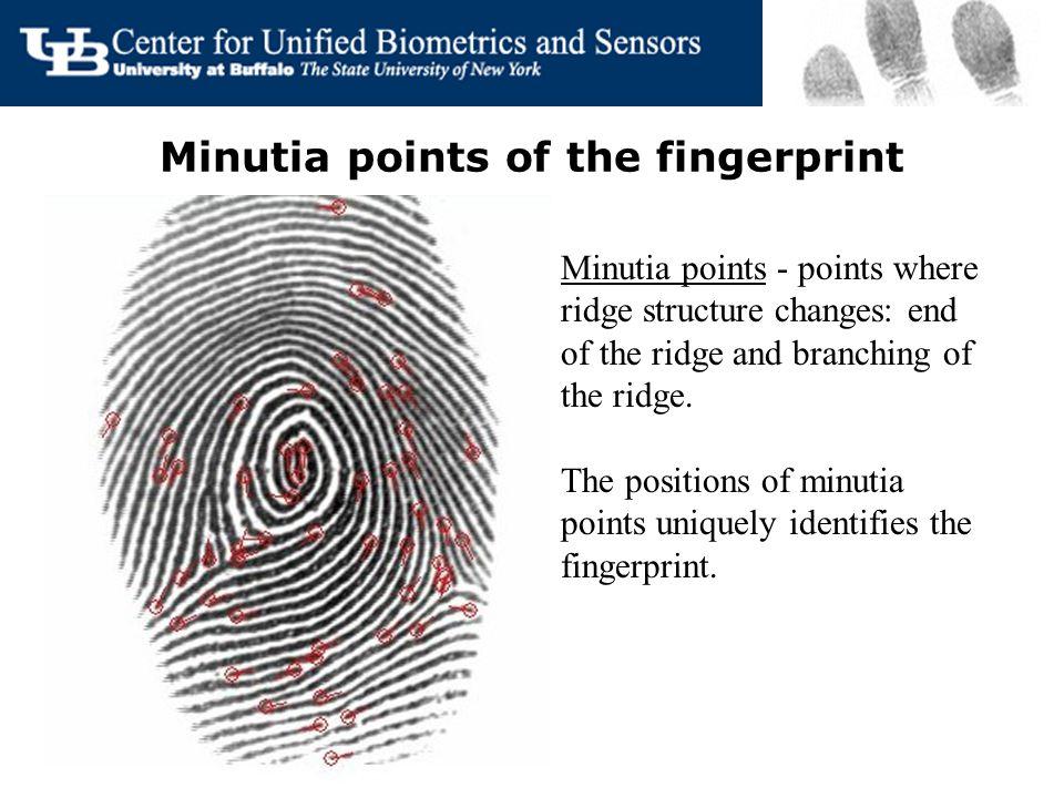 Total Finger Ridge