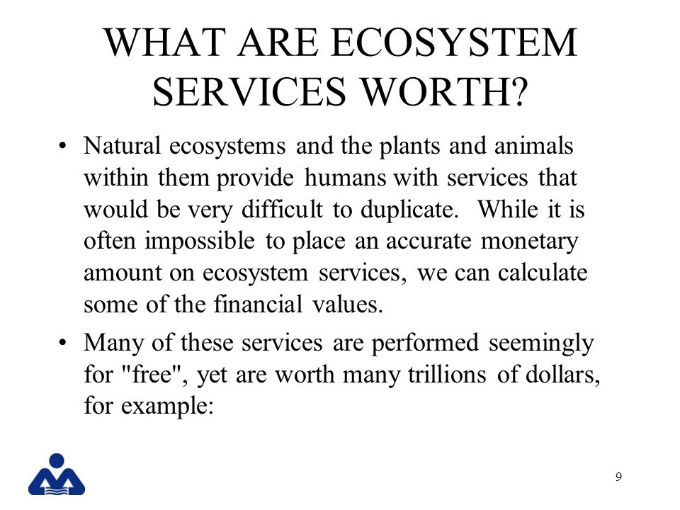 WHAT ARE ECOSYSTEM SERVICES WORTH