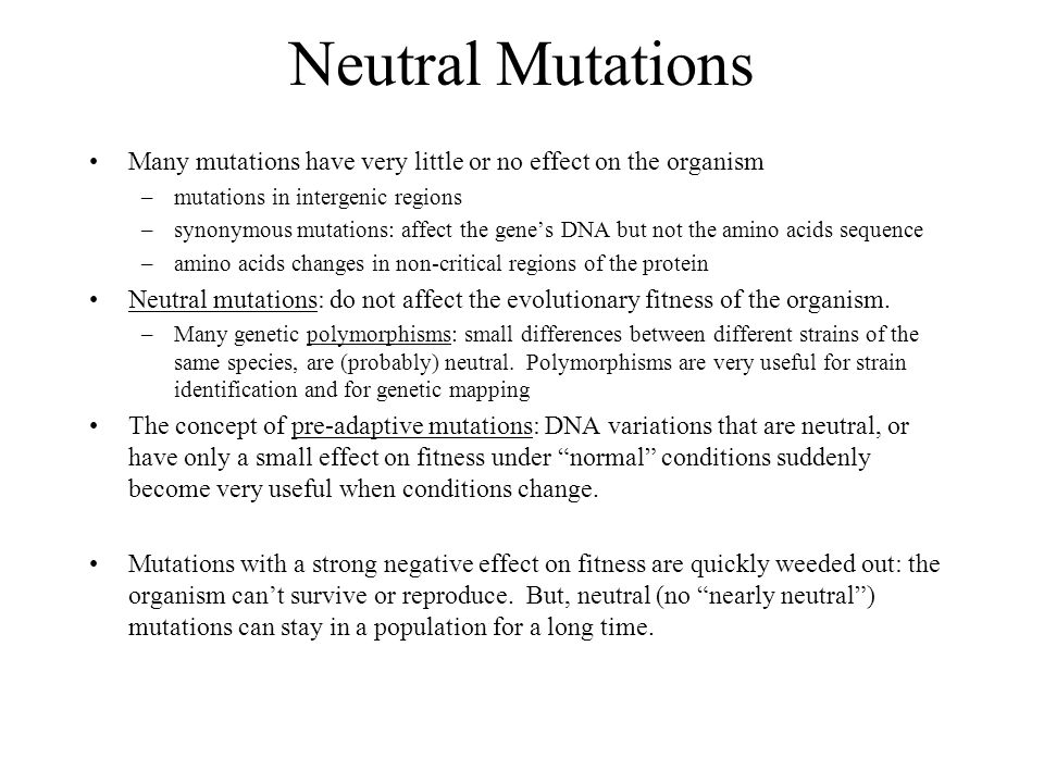 Neutral Mutation Examples Images Example Cover Letter For Resume